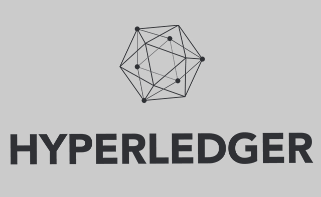 Customized Hyperledger Solutions